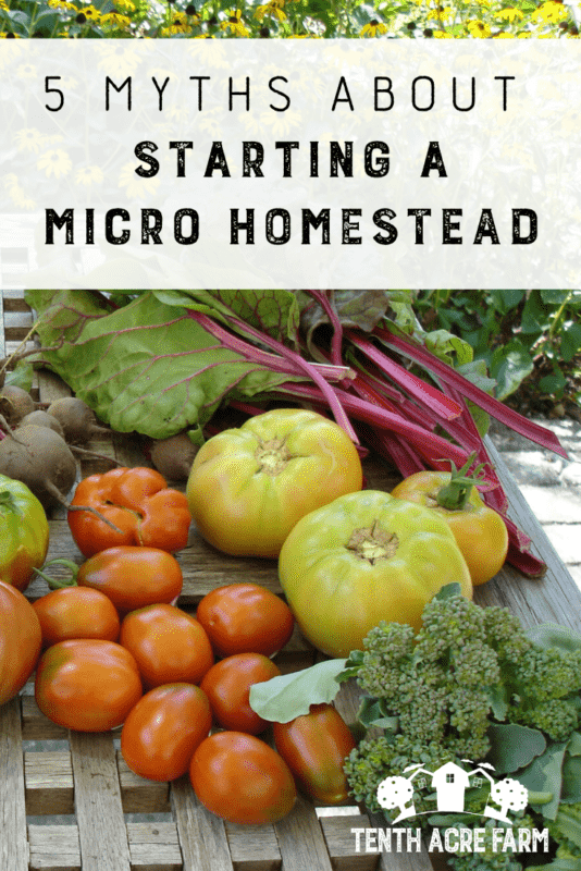 5 Myths About Starting A Micro Homestead: Would you like to grow food for your family on your own micro homestead? What's stopping you? Here are five myths that keep you from getting started. #homestead #homesteadgarden #vegetablegarden #gardening #gardentips