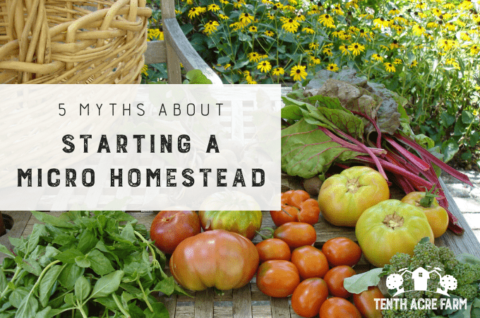 Would you like to grow food for your family on your own micro homestead? What's stopping you? Here are five myths that keep you from getting started.