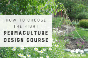 How to Choose the Right Permaculture Design Course: Looking for a permaculture design course? There are plenty to choose from—here's how to find the right permaculture course to meet your needs. #permaculture #permaculturedesign #suburbanpermaculture #permaculturegarden #gardening #gardentips