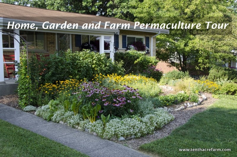 Home, Garden and Farm Permaculture Tour