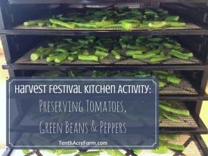 Harvest Festival Kitchen Activity: Preserving Tomatoes, Green Beans, & Peppers