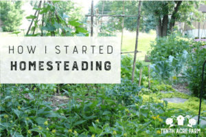 How I Started Homesteading