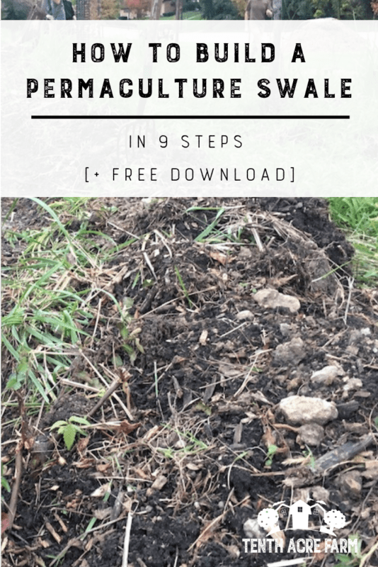 Build a Permaculture Swale: Learn the technical, nitty-gritty details of building a permaculture swale including how to choose an appropriate site/location and 9 steps for constructing one. #permaculture #conservation