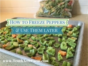 How to Freeze Peppers and Use Them Later