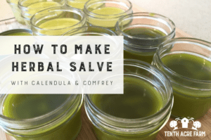 How to Make Herbal Salve with Calendula and Comfrey