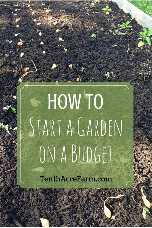 how to start a garden on a budget tenth acre farm. Black Bedroom Furniture Sets. Home Design Ideas