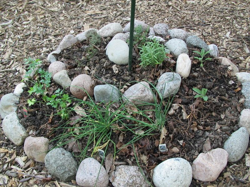 Make a Circle Garden for Beauty and Low Maintenance
