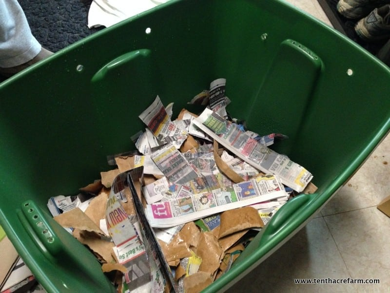 Our first worm bin was a gift, and we fussedover our new collection of worms like new parents. Unfortunately, our inexperience led to some problems. Here's a look at the new bin, the mistakes we made, and the problems that ensued.