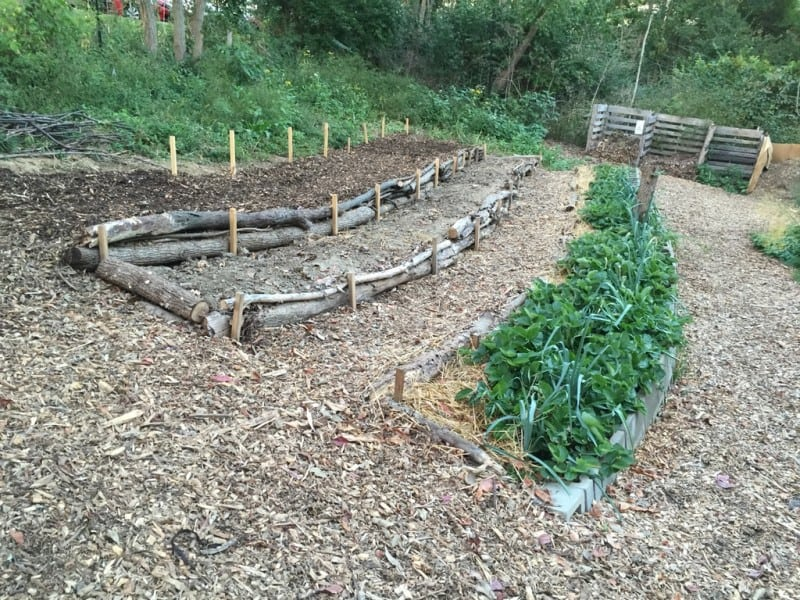 What is permaculture tenth acre farm for Terrace farming definition