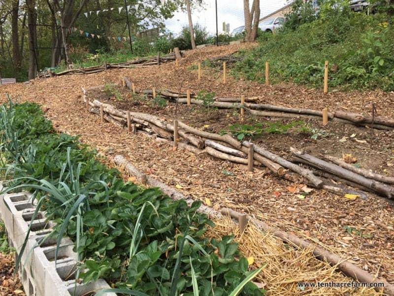 Stepped Patio Garden Ideas