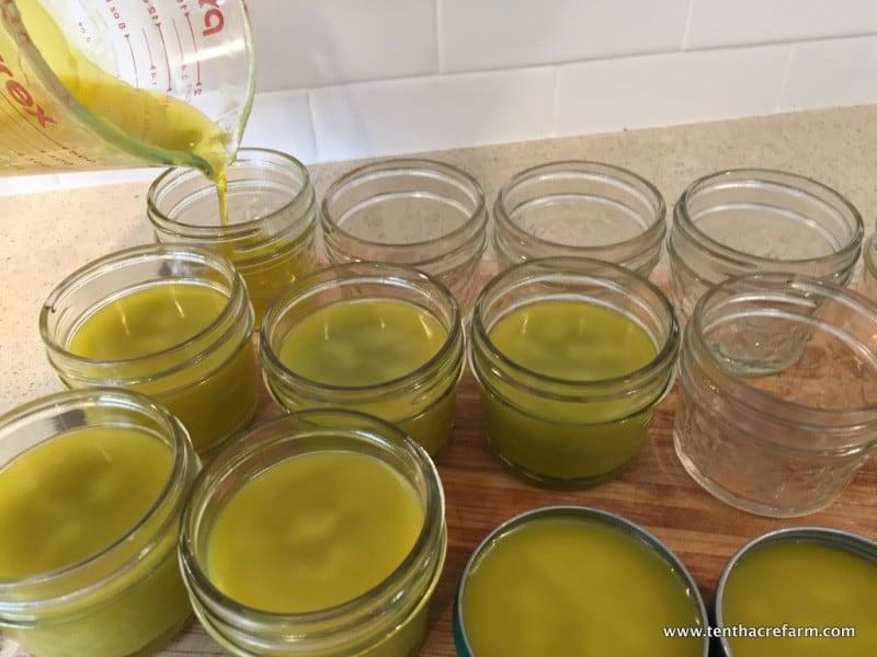 calendula and lemon balm salve