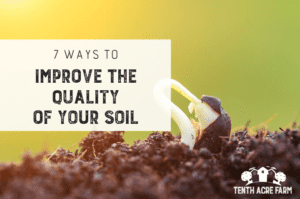 7 Ways to Improve the Quality of Your Soil