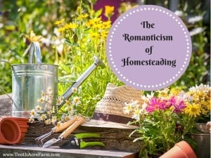 The Romanticism of Homesteading