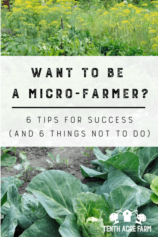 Want to be a Micro-Farmer? 6 Tips for Success: Would you like to grow food for your family, but don't know how to start? Here are 6 mistakes the new micro-farmer makes and 6 ways to ensure your success. #microfarm #gardenplanning #vegetablegarden #growingvegetables #homesteading #suburbanhomesteading #gardening #gardentips