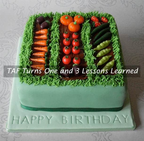 TAF Turns One and 3 Lessons Learned